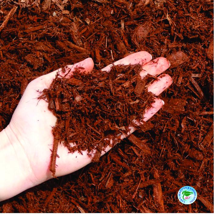 red-cedar-mulch