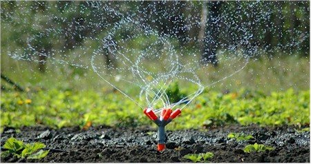 Sprinkler Systerms